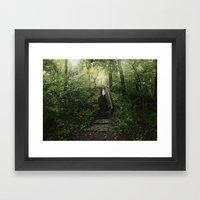 The Secret Forrest Framed Art Print