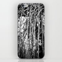 The Willow iPhone & iPod Skin