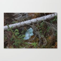 Untitled V Canvas Print