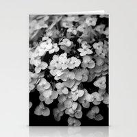 Tiny White Hydrangeas (I… Stationery Cards
