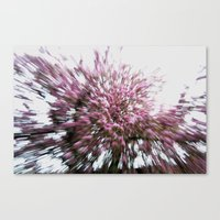 Abstract Pink Flowers 2 Canvas Print