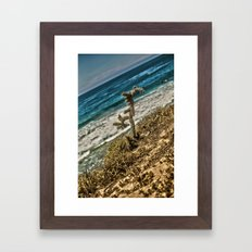 The Lonely Golden Cactus. Framed Art Print