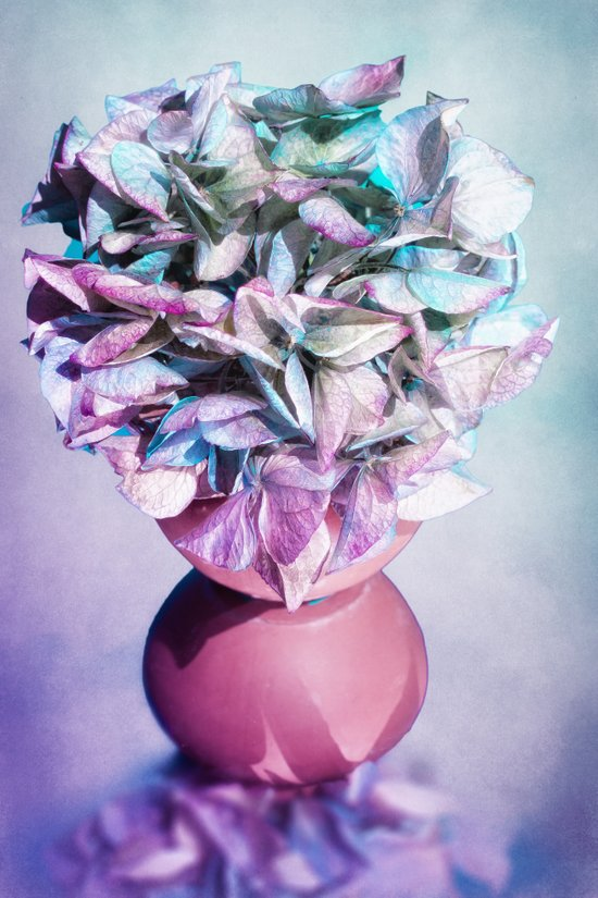 NOSTALGIA - Still life with vase and hydrangea flowers Art Print
