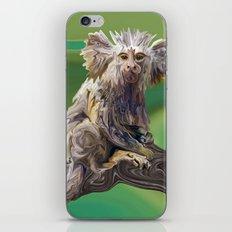 Melanie's Marmoset iPhone & iPod Skin