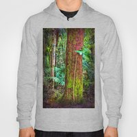 New And Old Rainforest G… Hoody