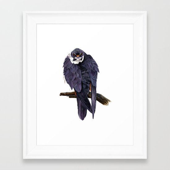 Hobby Framed Art Print