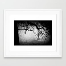 Branches in the water Framed Art Print