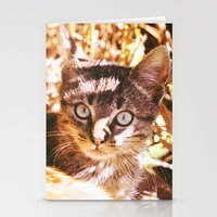 Cat In The Shadows Stationery Cards