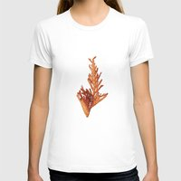 Fall Womens Fitted Tee White SMALL