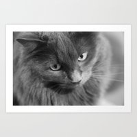 Misty In Black And White Art Print