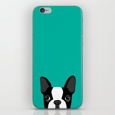 Boston Terrier iPhone & iPod Skin