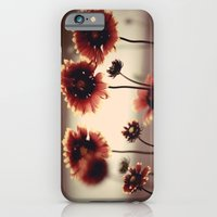 iPhone & iPod Case featuring Daisy Chained by Augustina Trejo