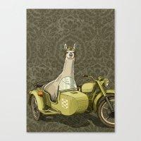 Sidecar Llama Canvas Print