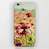 Forgotten Summer iPhone & iPod Skin