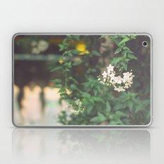 Set spring N1 Laptop & iPad Skin