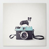 The Collie And The Diana Canvas Print