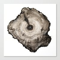 cross-section I Canvas Print