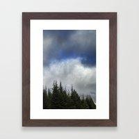 Purple Forest. Framed Art Print