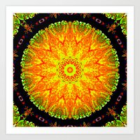 Citrus Slice Kaleidoscope Art Print