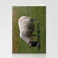 Sheep Baaaaa... Stationery Cards