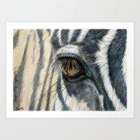 Zebra 808 Art Print