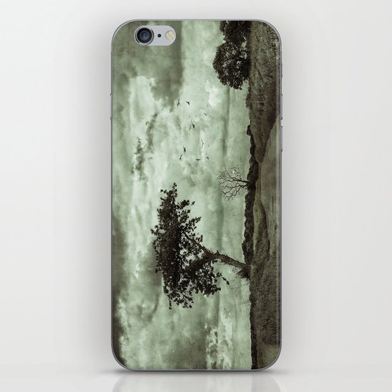 The Lonely Road iPhone & iPod Skin