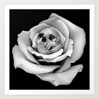 Beauty & Death - Edited Art Print