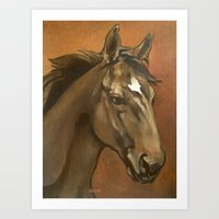 Sound Reason - Stallion Art Print