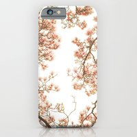 iPhone & iPod Case featuring Magnolia Tree Looking Up by Kimberly Blok