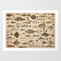 FISHES Art Print