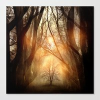 Searching Dreams Lost Canvas Print