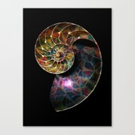Fossils Mosaic - The Nau… Canvas Print
