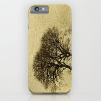 iPhone & iPod Case featuring Just Trees by J Coe Photography