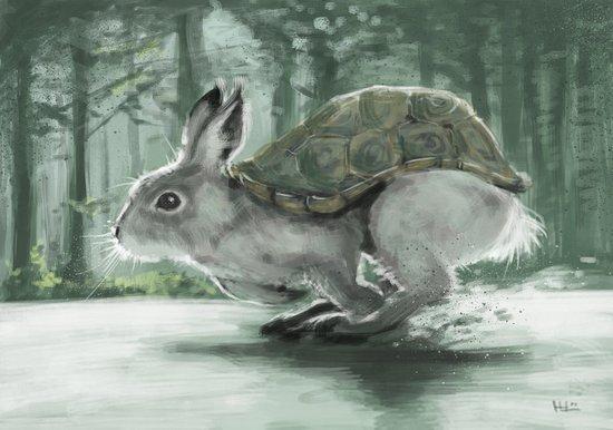 Rabbiturtle Canvas Print