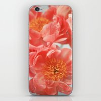 Paeonia #6 iPhone & iPod Skin