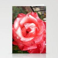 Rainy Day Rose Stationery Cards