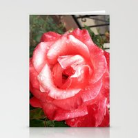 Rainy Day Rose Stationery Cards