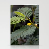 Blooming Fern Stationery Cards