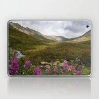 Fireweed & Fall in Alaska  Laptop & iPad Skin