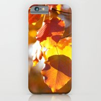 iPhone & iPod Case featuring Embers IV by Katie Kirkland Photography