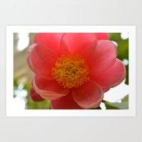Watered Pink Flower Art Print