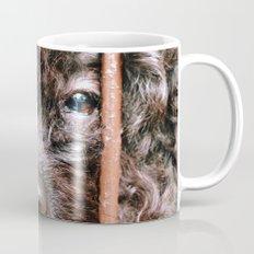 Where's My Master Mug
