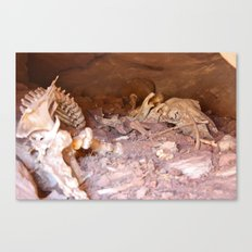 In the Hallowed Stone Canvas Print