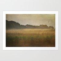 Misty Meadow Art Print