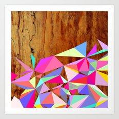 Wooden Multi Geo Art Print