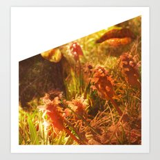 In The Woods They Thrive Art Print