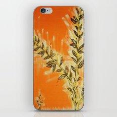 Orangy iPhone & iPod Skin