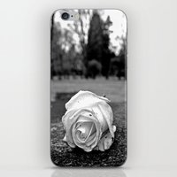 One Last Rose iPhone & iPod Skin