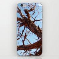 Juniper iPhone & iPod Skin