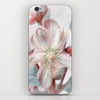 winter blossom iPhone & iPod Skin